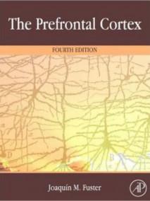 Prefrontal Cortex, 4/Ed