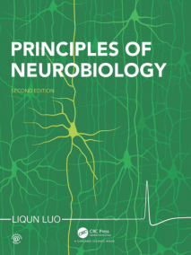 Principles of Neurobiology, 2/Ed